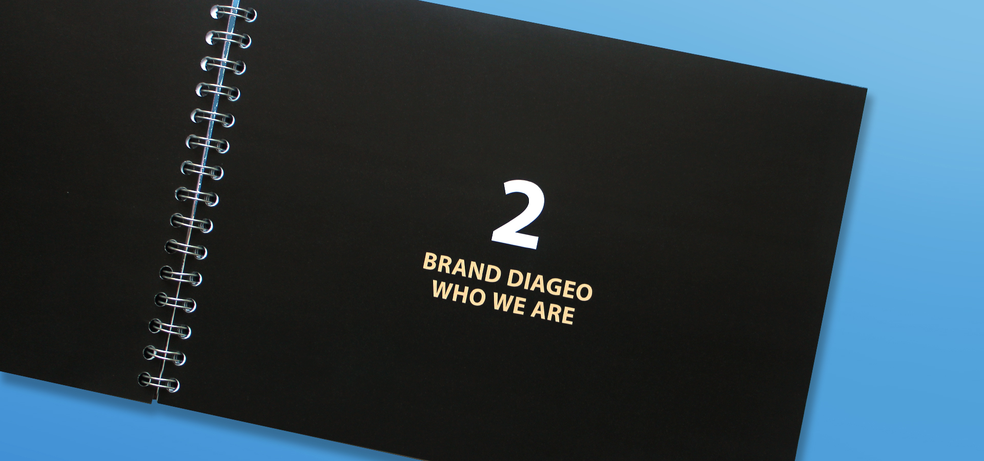 Diageo Brand Toolkit